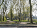 190329-Van-Nispenpark-Begin-situatie-102