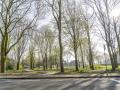 190329-Van-Nispenpark-Begin-situatie-103