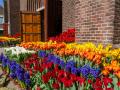 200411-bloemen-bij-kerken102