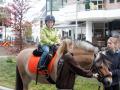 190427-Ritjes-te-paard110