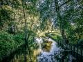 Schaepmanlaan_Water_01_nk