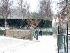 Hillegom-in-sneeuw101