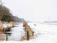 Hillegom-in-sneeuw107