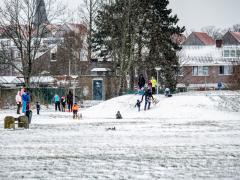 Hillegom-in-sneeuw108