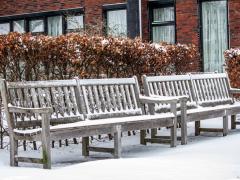 Hillegom-in-sneeuw109