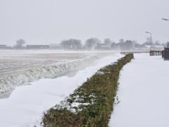 Hillegom-in-sneeuw123