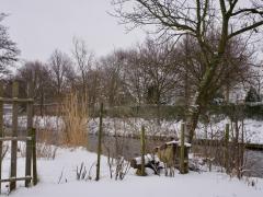 Hillegom-in-sneeuw124