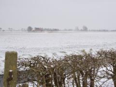 Hillegom-in-sneeuw126