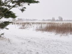 Hillegom-in-sneeuw127