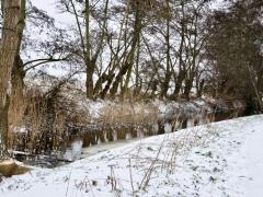 Hillegom-in-sneeuw128