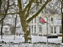 Hillegom-in-sneeuw135