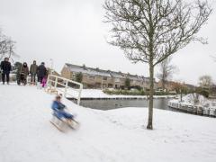 Hillegom-in-sneeuw155