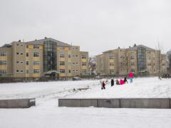 Hillegom-in-sneeuw162