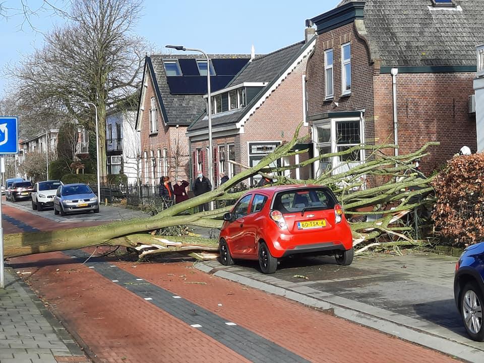 Stormschade in Hillegom